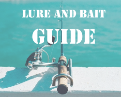 Easy homemade carp bait recipes