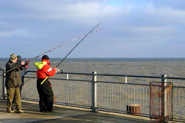 Pier fishing tips fishing tips guru for Pier fishing tips