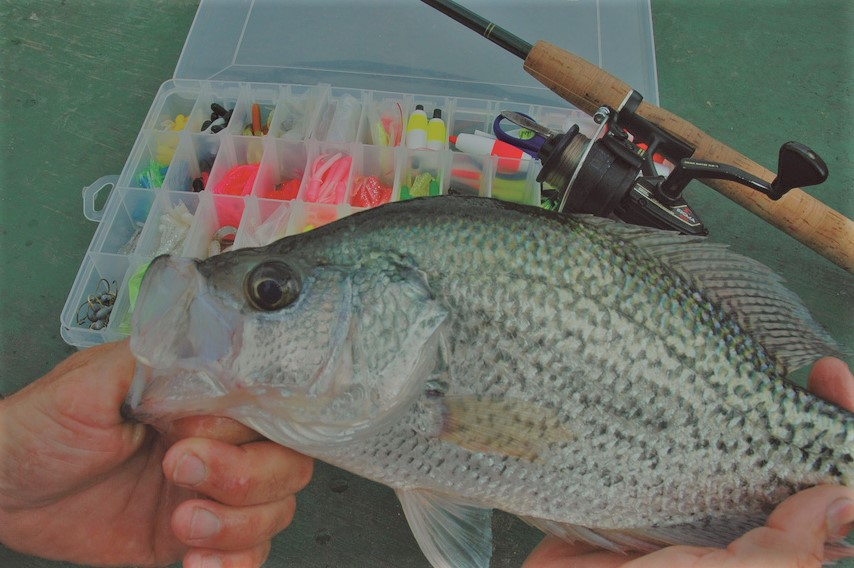 ice fishing for crappie tips fishing tips guru