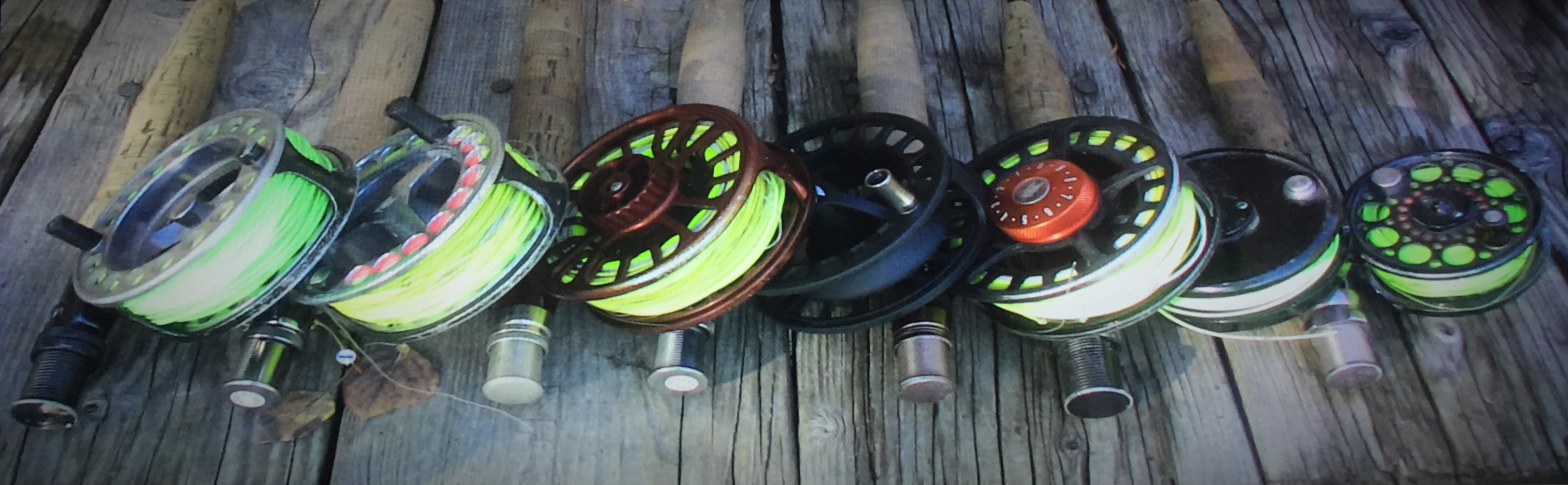 Fishing Blog